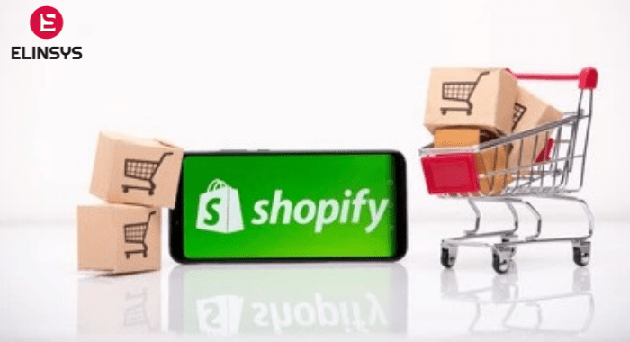 How to Grow Your Shopify Store from Scratch?